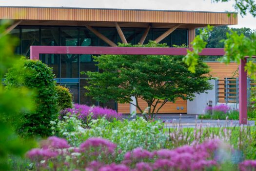 RHS-Bridgewater-Salford-Greater-Manchester-The-Worsley-Welcome-Garden-2-©-RHS-Photographer-Neil-Hepworth
